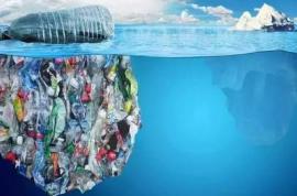 政策落地,可降解塑料成效仍值得期待